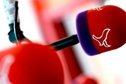 Radio Omroep Flevoland
